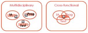 Multi-Disciplinary? Cross-Functional!